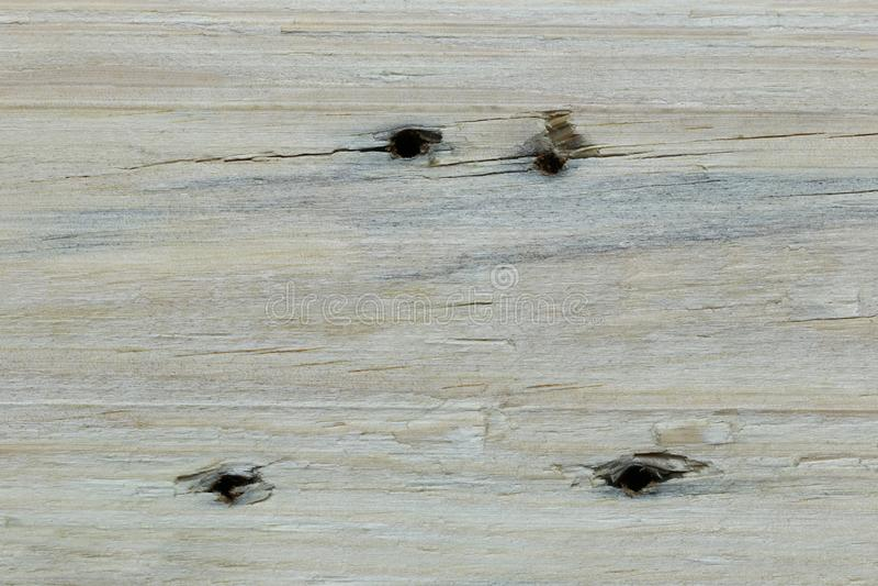 与大头钉孔的布朗木地板背景 免版税库存照片