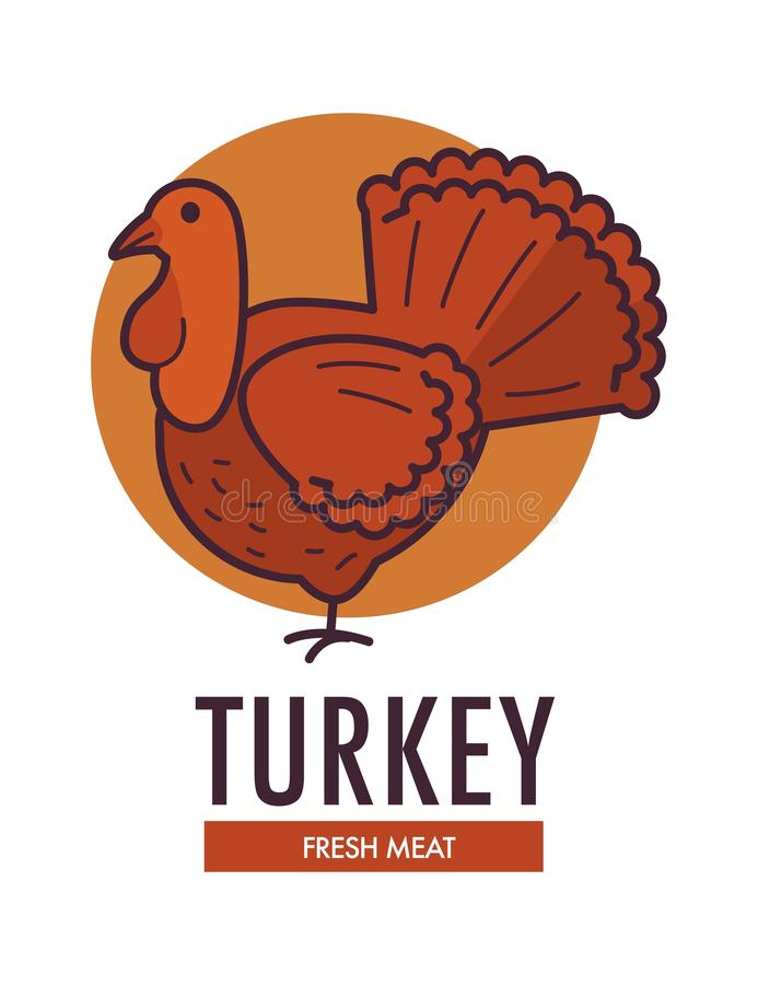 与大家养的鸟的土耳其新鲜的肉增进略写法 向量例证