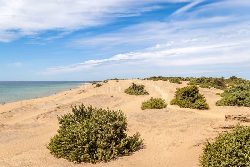 与大沙丘的Issos海滩在科孚岛海岛上 库存图片
