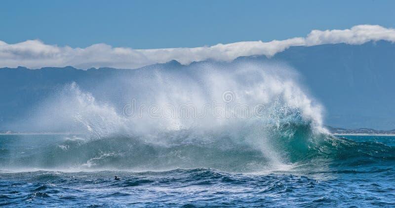 与大波浪的海景 免版税图库摄影