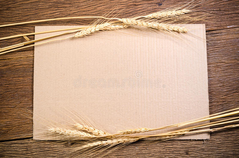 与大麦五谷的纸板纸在木桌上 免版税图库摄影