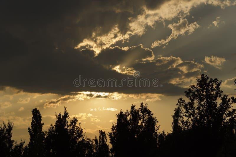 与太阳光芒和树射线的乌云 免版税库存图片