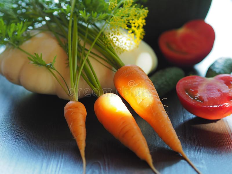 与太阳光芒的红萝卜 免版税库存图片
