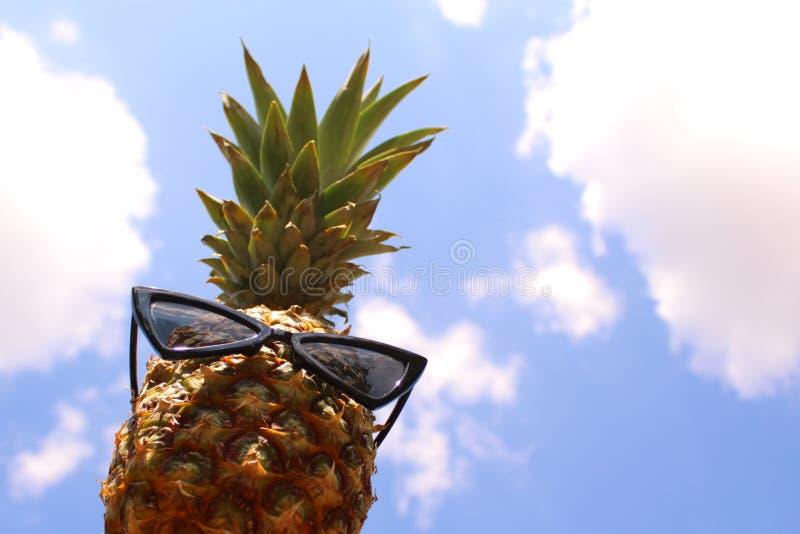 与太阳镜和蓝色夏天天空的滑稽的菠萝 库存照片