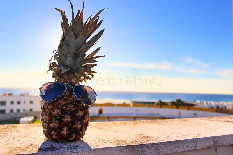 与太阳镜的愉快的菠萝 库存图片
