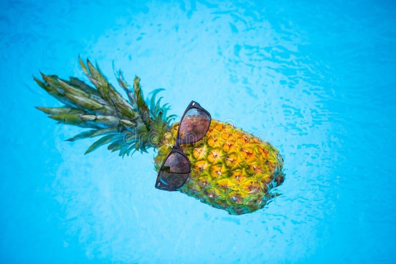 与太阳镜的菠萝在水池,假日感觉 库存图片