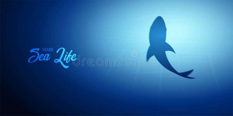 与太阳鲨鱼光芒和剪影的水下的背景  深海横幅 使颜色女孩例证杂志读的含沙向量靠岸 皇族释放例证