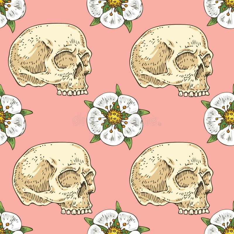 与头骨和白花的无缝的样式 库存例证