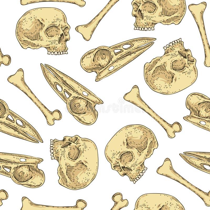 与头骨和骨头的无缝的样式 皇族释放例证