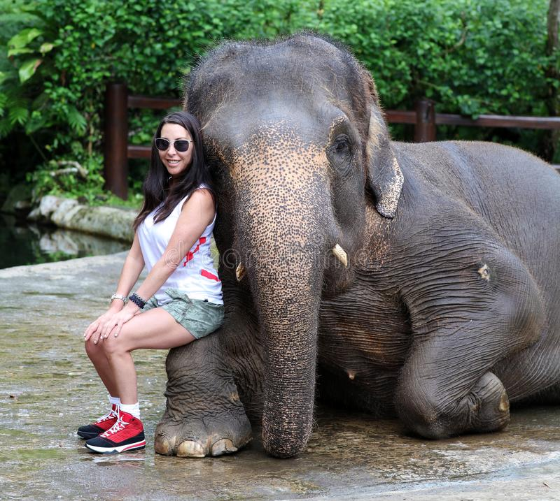 与女孩的美丽的独特的大象大象保护保留的在巴厘岛印度尼西亚 免版税库存照片