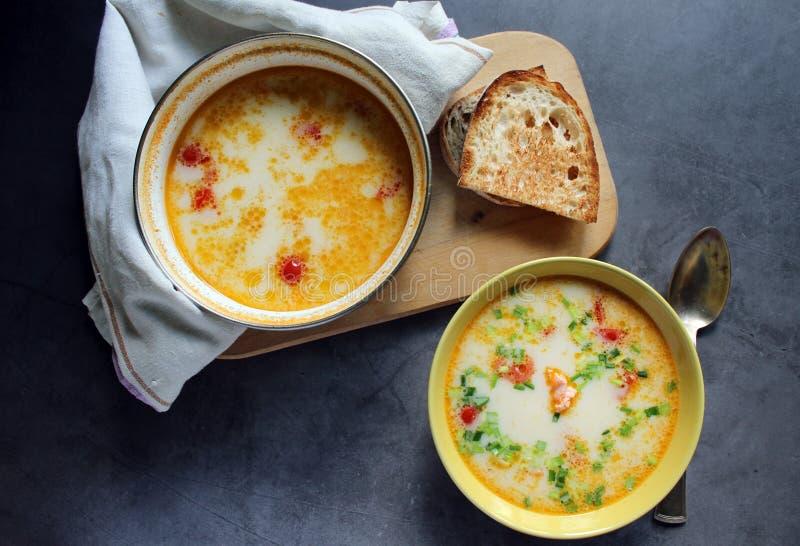 与奶油和菜的三文鱼汤在一块黄色板材 平底深锅用在毛巾的三文鱼汤 在委员会的面包 在一黑暗的backg 免版税库存照片