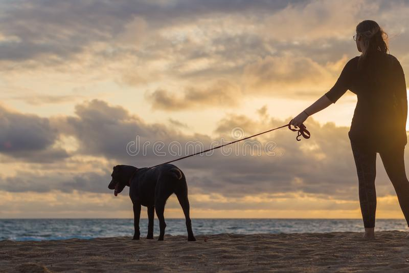 与她的狗的少妇观看的日落 免版税库存照片
