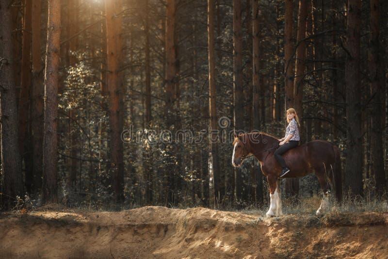 与她的马的年轻女人车手在平衡在森林的日落光 库存照片