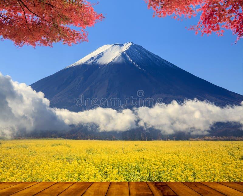 与好的槭树和花的美丽的山 免版税库存图片