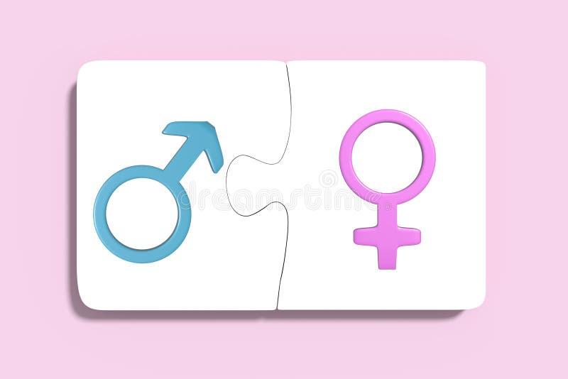与妇女和人标志的两个难题 库存例证
