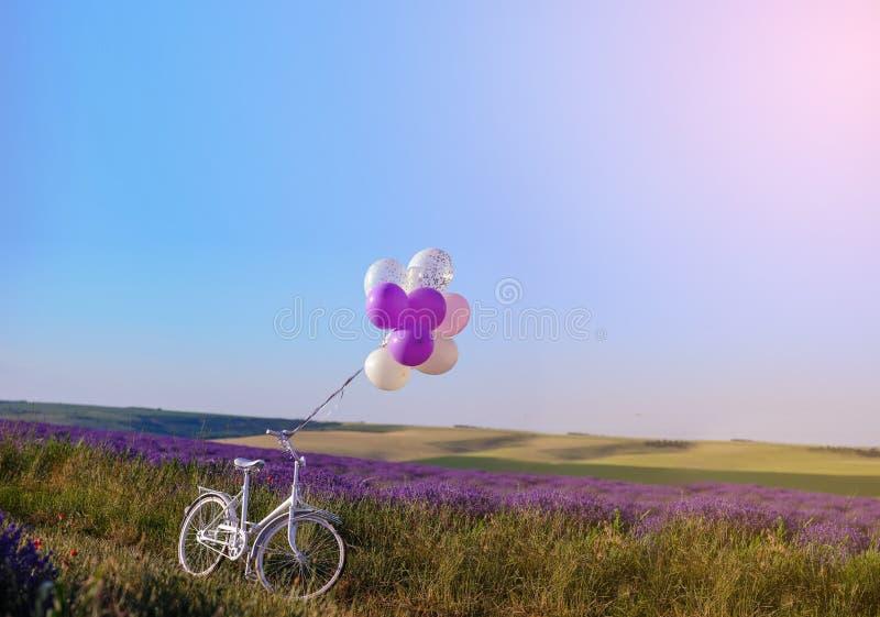 与婚姻的白色自行车的淡紫色 免版税库存照片
