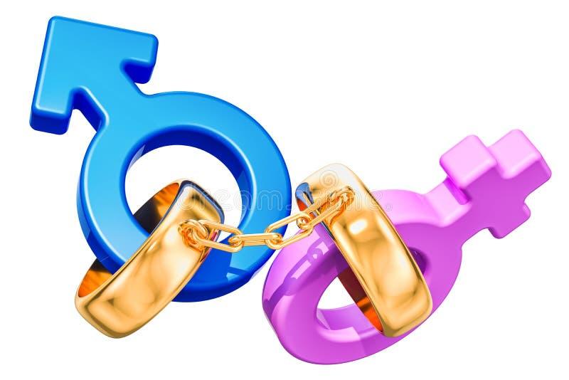 与婚礼被连接的金戒指的女性和男性性别标志 皇族释放例证