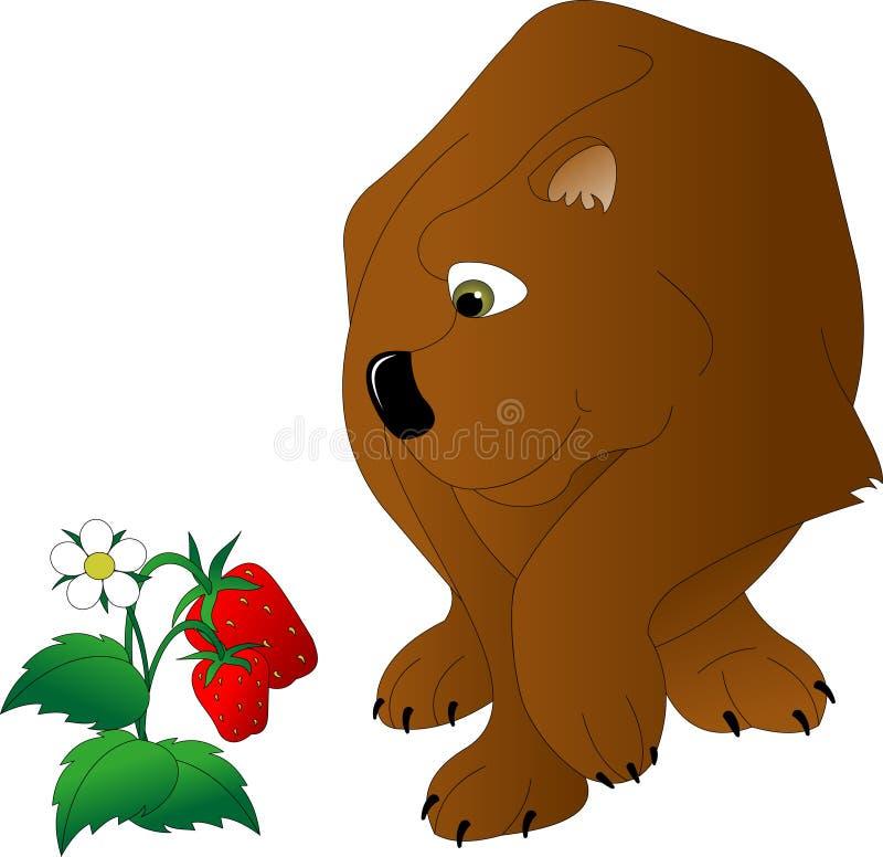 与嫉妒的棕熊 向量例证