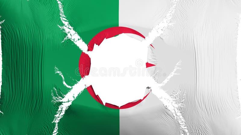 与孔的阿尔及利亚旗子 库存例证