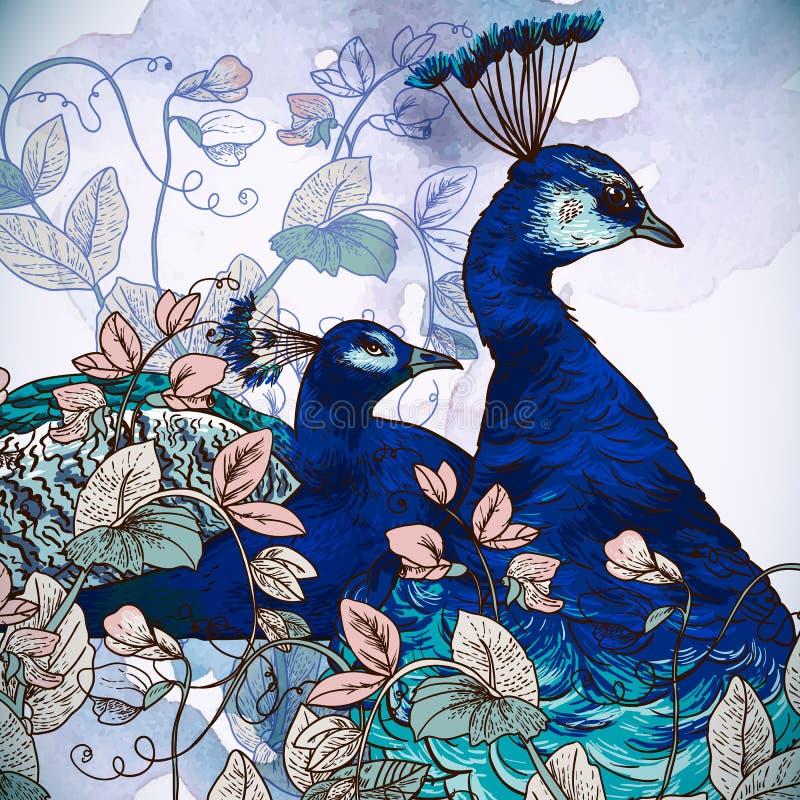 与孔雀的花卉背景 库存例证