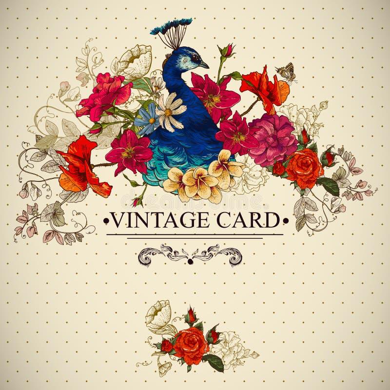 与孔雀的花卉葡萄酒卡片 向量例证