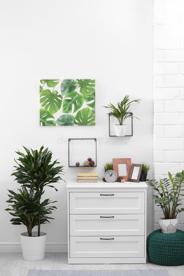 与室内植物的时髦的现代室内部 库存图片
