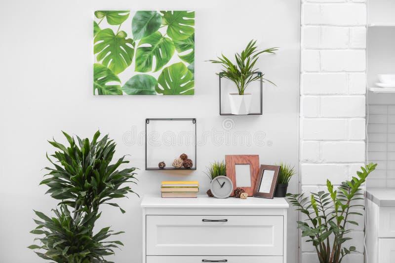 与室内植物的时髦的现代室内部 库存照片