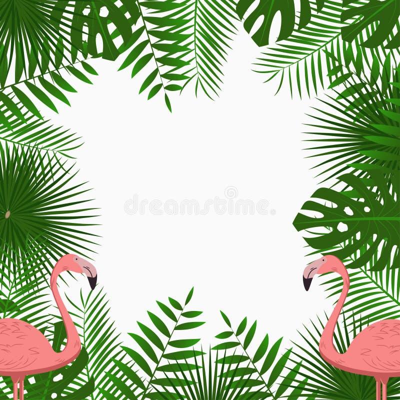 与密林棕榈树的热带卡片、海报或者横幅模板离开和桃红色火鸟鸟 异乎寻常的背景 向量 皇族释放例证