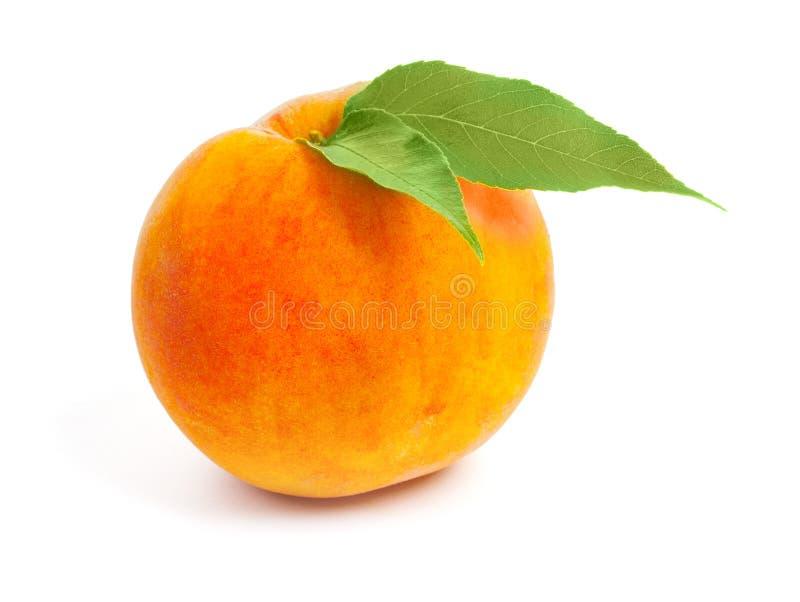 与对的新鲜的成熟水多的红色桃子被隔绝的绿色叶子  免版税库存图片