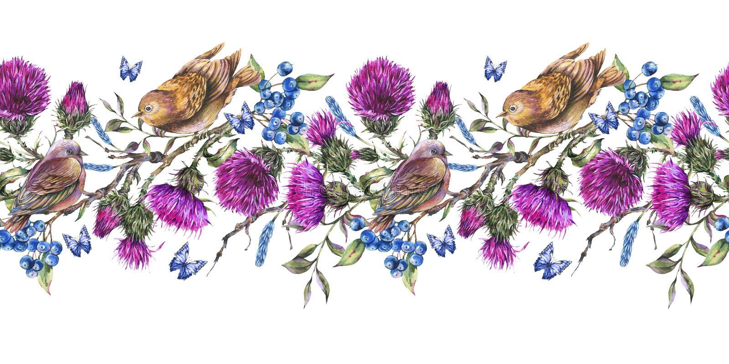 与对的水彩seqamless边界在分支的鸟,蓟,莓果 向量例证
