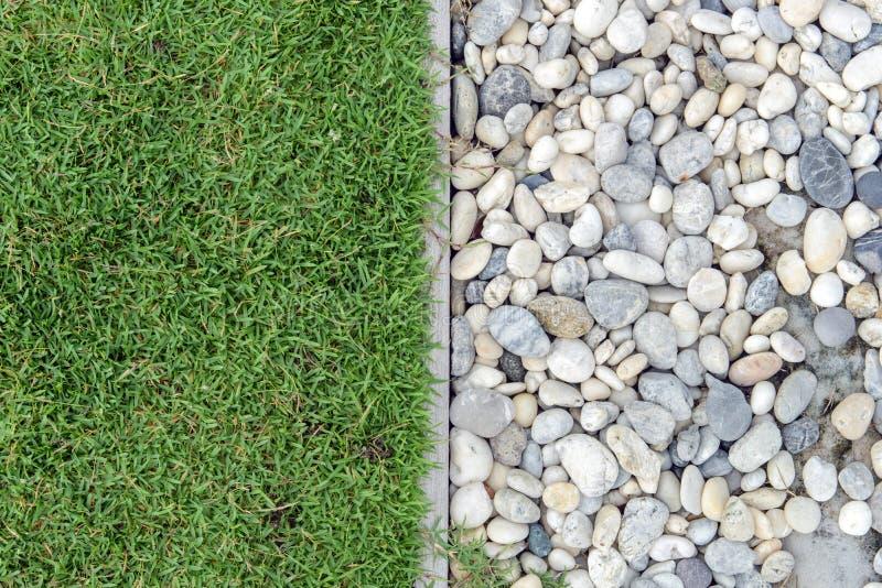 与小卵石的绿草,石头和草在庭院里,与岩石,与草的小卵石的草 库存图片
