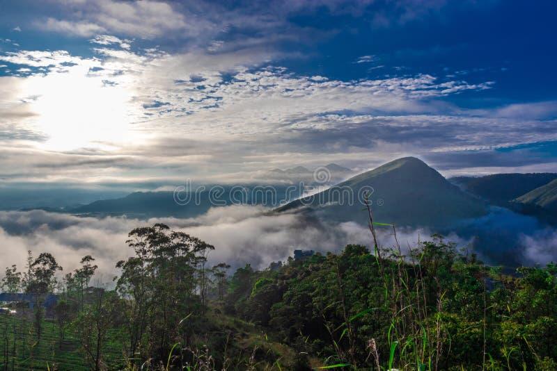 与小山低云和天空蔚蓝的森林视图 免版税图库摄影