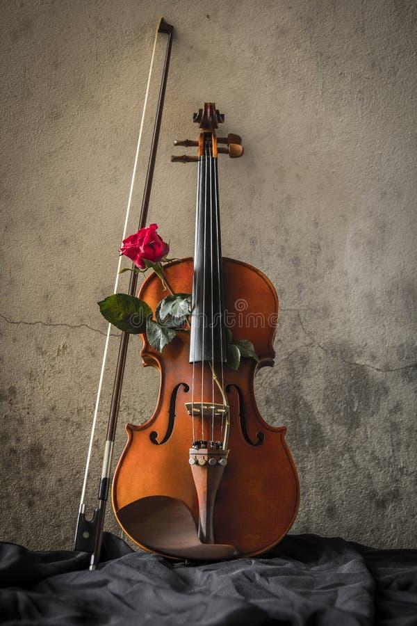 与小提琴和玫瑰华伦泰的静物画 库存图片