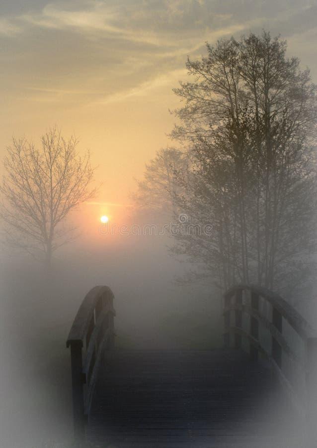 与小桥梁和树的日出在薄雾 免版税库存图片