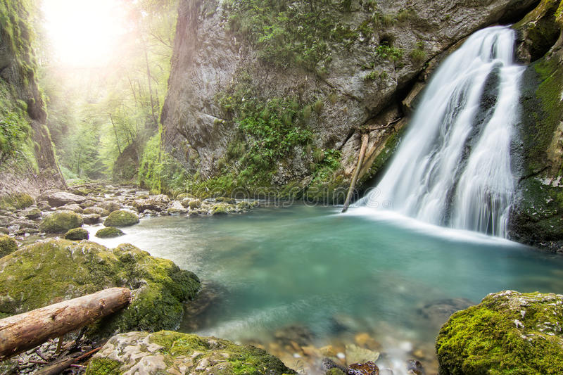 与小瀑布的美丽的峡谷在欧洲 免版税图库摄影