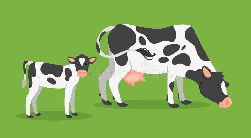 与小牛的母牛 皇族释放例证