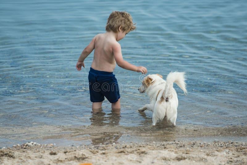 与小犬座的逗人喜爱的儿童游戏在海滨 在海水的男孩立场在白色狗附近 去的朋友一起游泳 库存照片