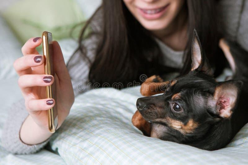与小狗的强的友谊 库存照片