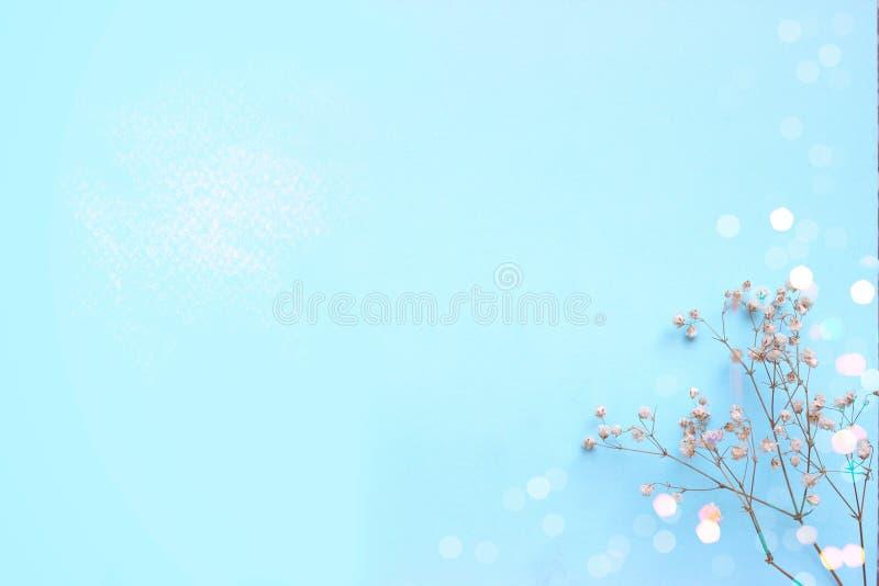 与小白花和bokeh的浅蓝色背景,与co 免版税库存照片