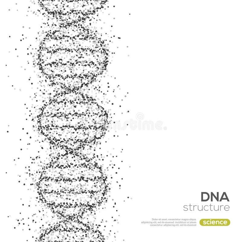 与小颗粒的黑脱氧核糖核酸螺旋 皇族释放例证
