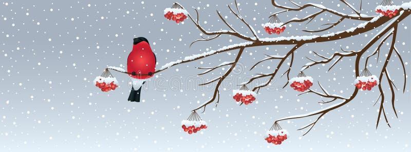 与小鸟的圣诞节背景 免版税库存图片