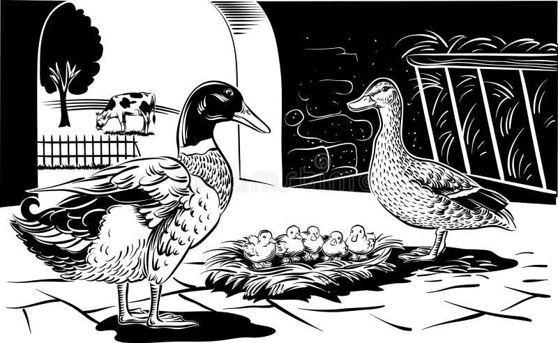 与小鸡的母鸭子 向量例证