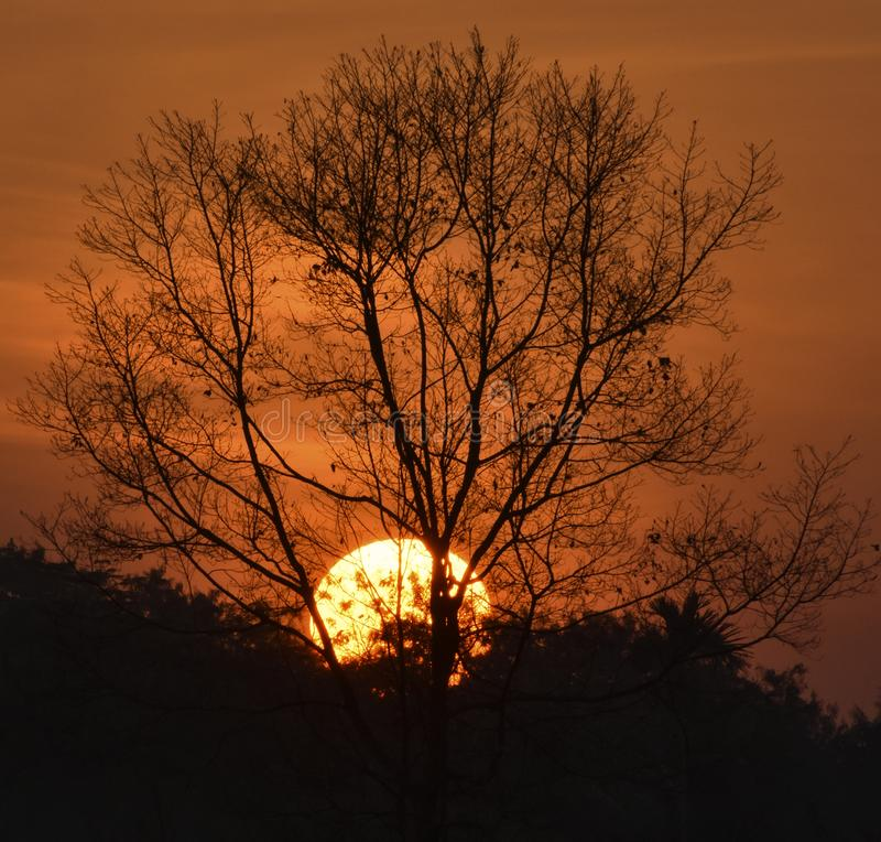 与尼康D3400的最佳的日落摄影 库存图片