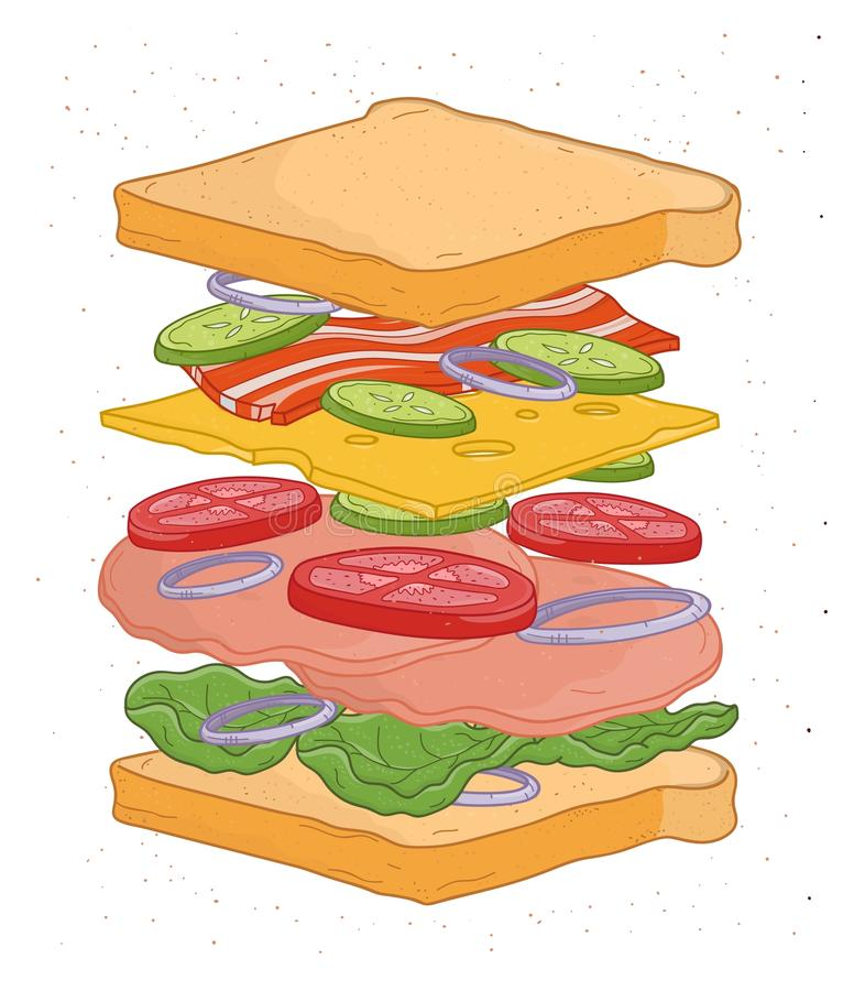 与层数的可口在白色背景隔绝的三明治或成份-在切片,菜,沙拉叶子上添面包 向量例证