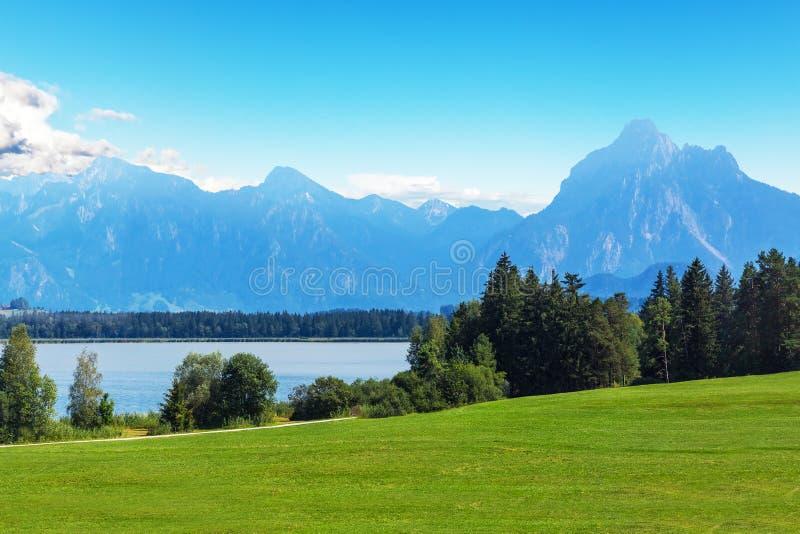 与山、湖和森林的风景夏天风景 免版税库存照片