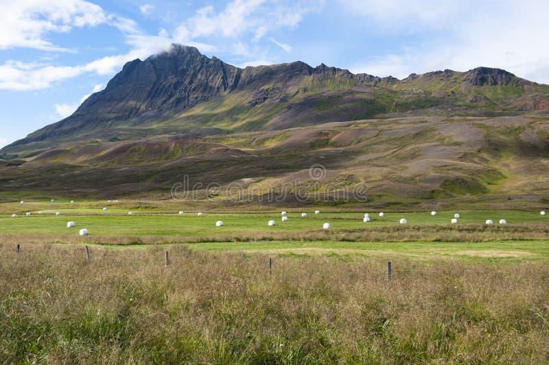 与山、领域和干草堆,冰岛的农村风景 库存图片