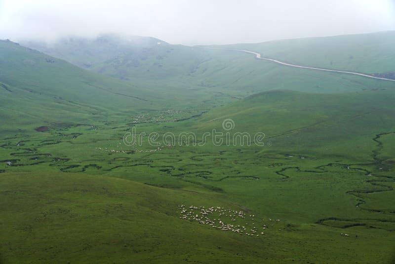 与山和云彩的曲折河在奥尔杜土耳其的佩尔申贝高原 图库摄影