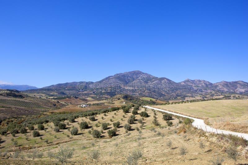与山和农田的干燥安达卢西亚的风景 图库摄影