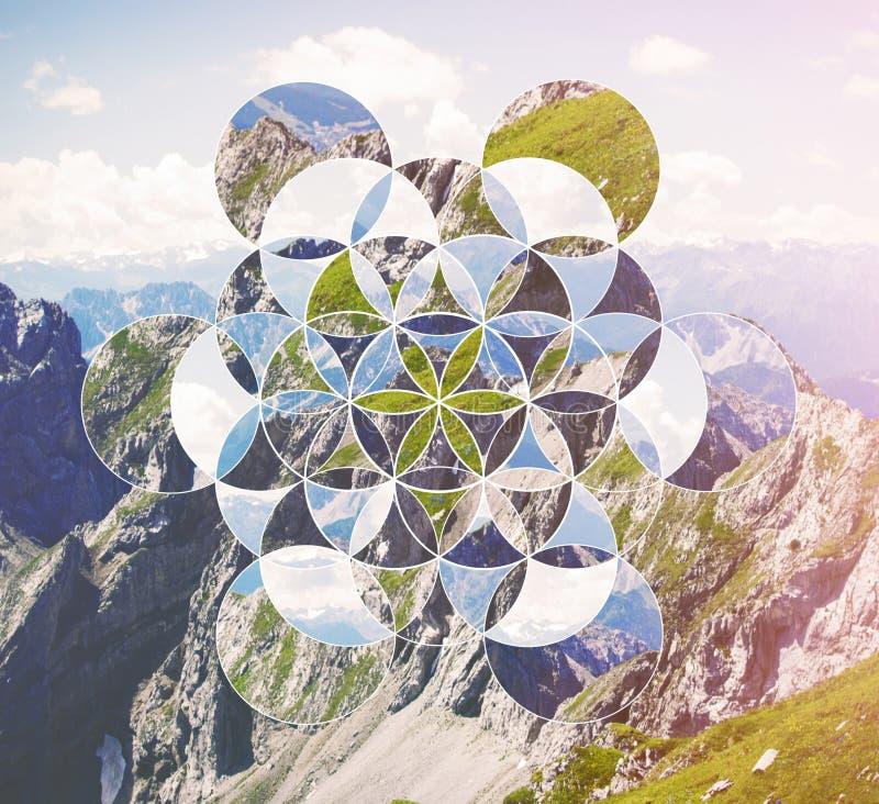 与山和生活标志花的拼贴画  库存图片