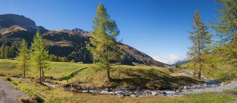与山小河和落叶松属树的田园诗sertig谷 免版税库存照片